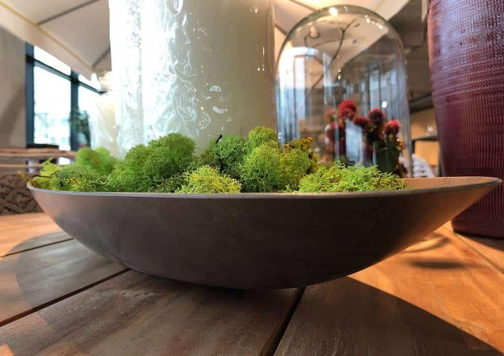 Jesienne inspiracje w salonach Garden Space