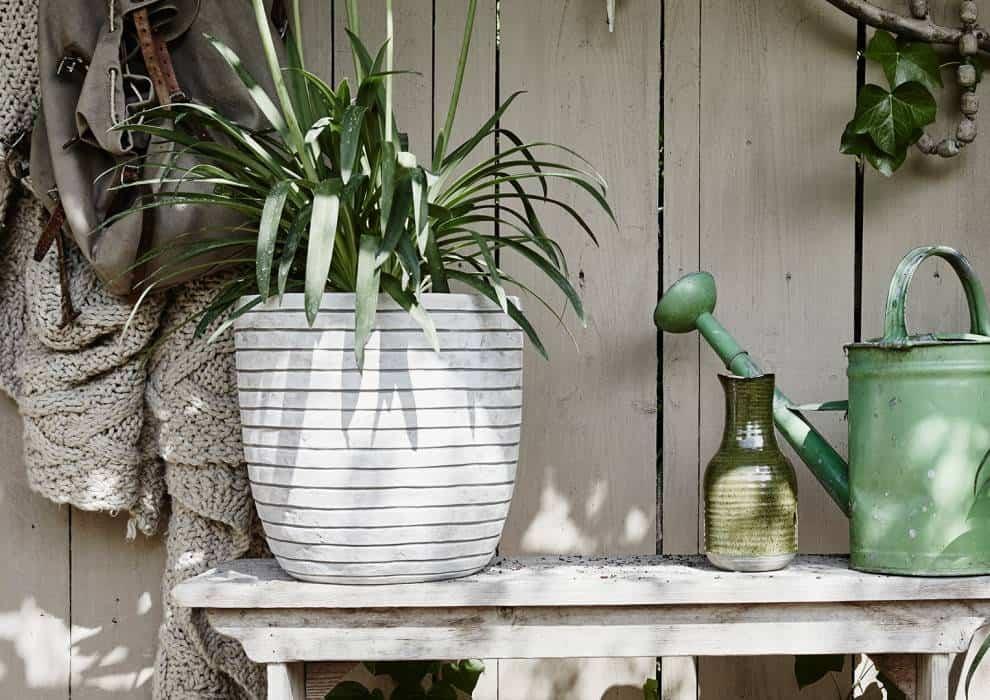 Donice ogrodowe – nowości. Wydobądź piękno roślin!