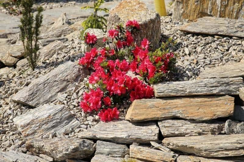 Kamień łamany laminowany