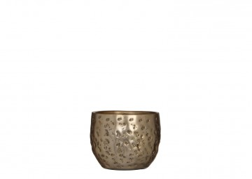 Tealight champagne 6,5cm