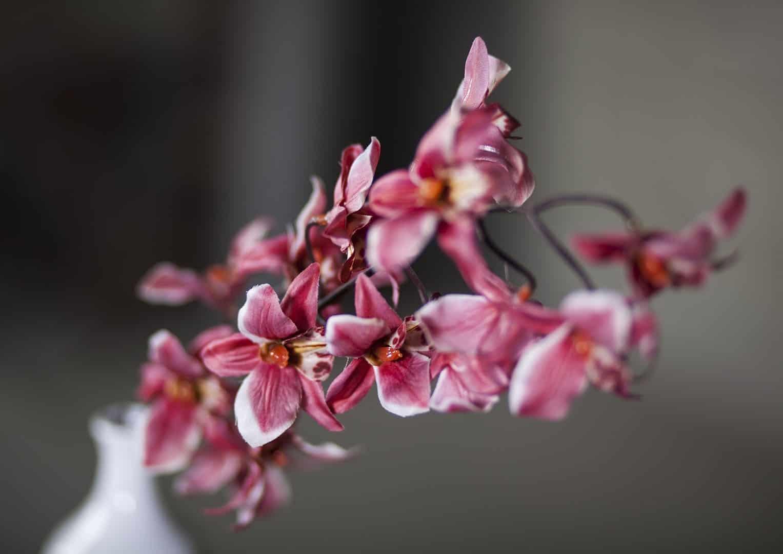 Orchidea różowa 70cm
