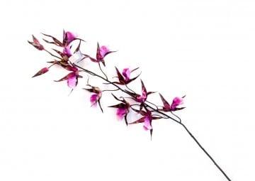 Orchidea fioletowa 11cm