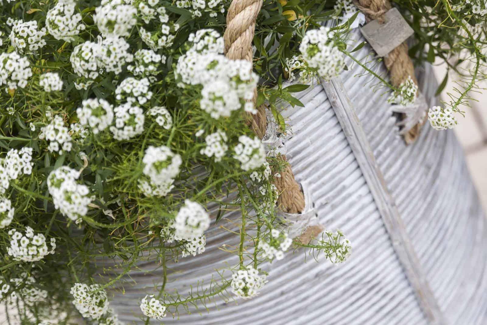 Kosz rattanowy AMIENS ⌀40cm x wys. 45cm white